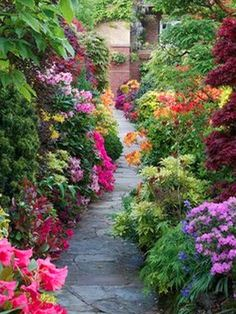 Beautiful Gardens -Medium-Size Garden Plans