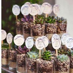 #teraryum #terarium #minibahçe #bahçe #sukulent #sukulentas #cactuslove #cactus #kaktus #babalargunu #babam #nikah #düğün #hediye #hediyelik #cute #cutepeople #bonsai #mezuniyet #hatıra #siparis #siparisalinir #siparisicindm������ http://turkrazzi.com/ipost/1521857510196133413/?code=BUeuVemAD4l