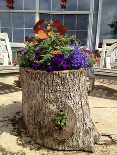 This post contains the most impressive tree stump planters. These planters will definitely make you have an outstanding small garden. Garden Crafts, Garden Projects, Garden Art, Garden Design, Tree Stump Planter, Log Planter, Tropical Landscaping, Yard Landscaping, Ponds Backyard