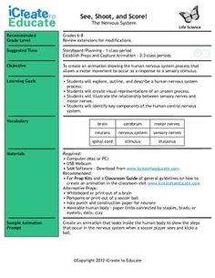 Physical chemical change work sheet with answers chemical life science nervous system fandeluxe Choice Image