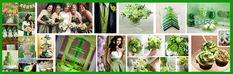 Saint Patrick's day wedding celebrations, Irish wedding traditions Green Wedding, Summer Wedding, Wedding Day, Wedding Stuff, Wedding Color Schemes, Wedding Colors, Wedding Flowers, Wedding Themes, Wedding Decorations