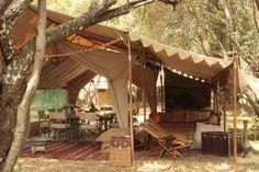 safari home Meredith Durr