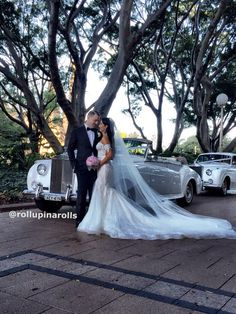 Classic bride in Steven Khalil