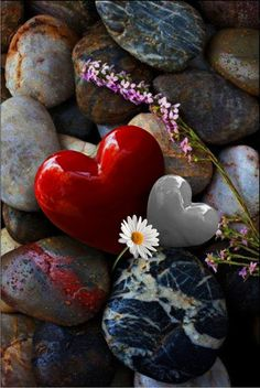 Beautiful heart rocks