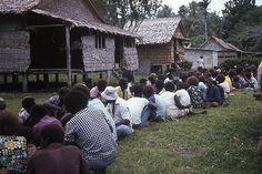 Roviana Solomon Islands - Google Search Solomon Islands, Dolores Park, Google Search, Travel, Viajes, Destinations, Traveling, Trips