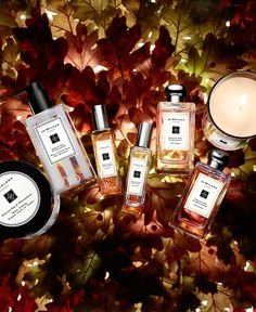 The English Oak collection. The magic of the forest. Captured in two spellbinding new Colognes. A bewitching Body Crème. A luxurious Body & Hand Wash. An embracing Home Candle.