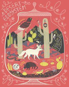 A Desert Ecosystem: Terrarium Art Print by Rachelignotofsky