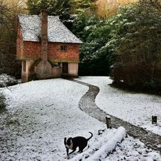 England under snow - our favourite pictures