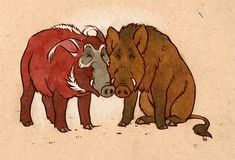 these two pigs are my buds commission for of her and mbala's porcine avatars - a european boar and red river hog :] argh if i could i'd just draw pigs all day every day. Red River Hog, Biology Art, Pet Pigs, Cool Eyes, Cartoon Drawings, Art Inspo, Moose Art, Characters, Deviantart