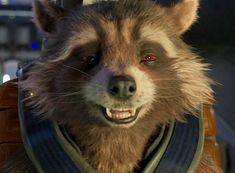 Rocket Raccoon, Racoon, Marvel E Dc, Disney And Dreamworks, Marvel Characters, Guardians Of The Galaxy, Dc Universe, Live Action, My Drawings
