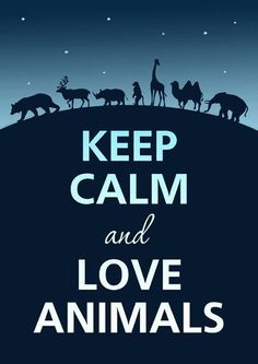 Keep calm & LOVE animals!   We think we can do that ;)