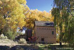 #SantaFe #FallFoliage  El Rancho de las Golondrinas