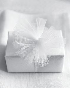 White Tulle over white paper
