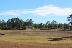 Just Sold property in Eustis Florida with 8 acres, call 352-551-0308