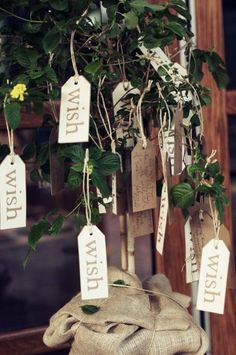 love the idea of the wish tree, and then planting it in the yard after the wedding