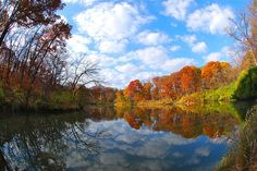 Gorgeous fall colors to explore at The Morton Arboretum's 1,700-acres