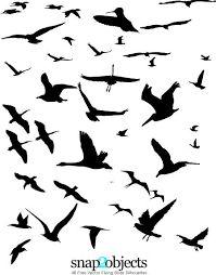 Bildergebnis für outlines of flying birds