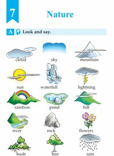 A dictionary for everyday activities english picture pdf process