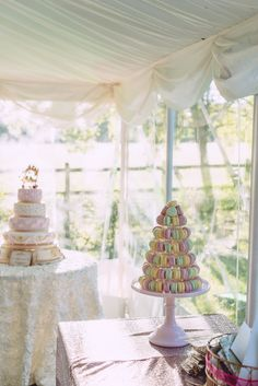 Marie Antoinette Pink Wedding Macaron Tower http://www.annapumerphotography.com/