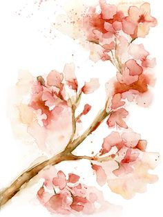 Watercolor Cherry Blossom PRINT of my watercolor painting, by Katrina Pete, coral pink cherry blossom branch, floral wall art
