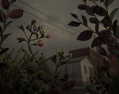 daniel-shipp-fleurs-03 - La boite verte
