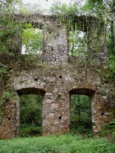 Ruínas da Lagoinha em Ubatuba, São Paulo, Brasil. #Ubatuba #Brasil #Brazil #viagem #turismo #natureza #nature #naturaleza #ruinas #monumento #preservacao