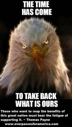 WAKE UP AMERICA! Hillary Clinton will destroy what little Obama hasn't destroyed of America! I Love America, God Bless America, America America, Eagle America, American Pride, American Flag, American Freedom, American Soldiers, American Spirit