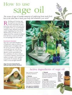 Herbs: How to Use Sage Oil. - Diy Healthy Home Remedies Essential Oil Uses, Doterra Essential Oils, Young Living Oils, Young Living Essential Oils, Healing Herbs, Natural Healing, Aromatherapy Oils, Herbal Medicine, Homeopathic Medicine