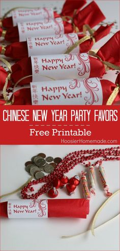 Celebrate Chinese New Year will these simple and easy to make Party Favors filled with traditional coins and treats.