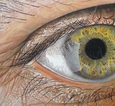 Super realistic drawings of eyes.