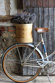 La bici y el tiesto con flores