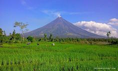 "Regarded as the ""perfect cone"" volcano; Mount Mayon dominates over the Legazpi's skyline. Hotel Reservations, Volcano, Mount Rainier, Philippines, The Good Place, Skyline, Adventure, Mountains, Places"