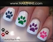 Image result for wildcat paw print in nail