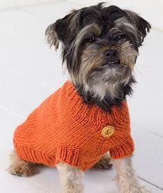 Dog Sweater Free Knitting Pattern WR2036