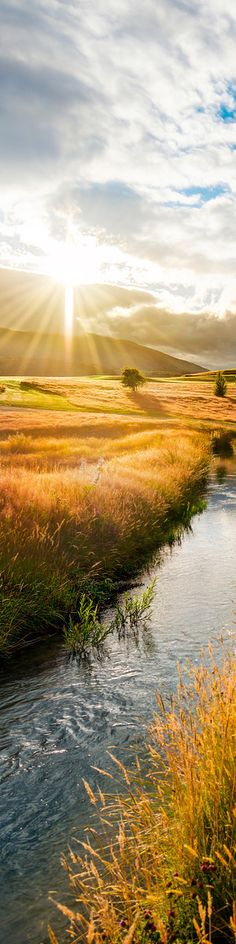 "Sunset in the fields of Queenstown, New Zealand - from the Exhibition: ""Cropped for Pinterest"" - photo from #treyratcliff Trey Ratcliff at www.StuckInCustoms.com"