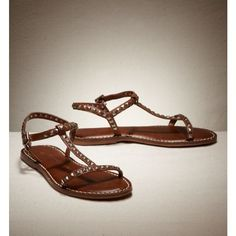 AE Women's AEO Studded Gladiator Sandal (Saddle Tan) (5) ($40) ❤ liked on Polyvore featuring shoes, sandals, american eagle, clothing & accessories, footwear, ankle strap gladiator sandals, tan sandals, ankle tie sandals, ankle tie gladiator sandals and t strap sandals