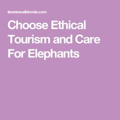 Choose Ethical Tourism and Care For Elephants