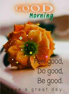 Good Morning Images For Whatsapp Good Morning Beautiful Pictures, Latest Good Morning Images, Good Morning Images Flowers, Good Morning Roses, Good Morning Gorgeous, Good Morning Picture, Morning Pictures, Beautiful Gif, Good Morning Msg