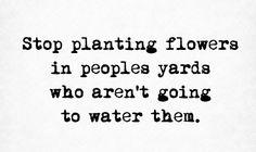 Stop planting flowers....