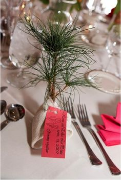 Fun Favor Idea: Give each guest a small tree they can plant. This can also be accompanied by a donation made in their name to Tree Fresno.