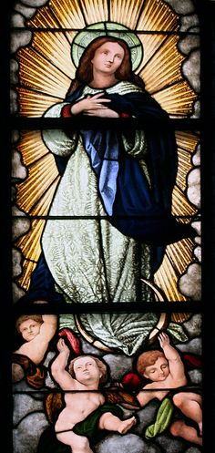 The Novena prayers for the Assumption of the Blessed Virgin Mary can be found here. Join in praying this Novena with thousands of faithful Catholics.