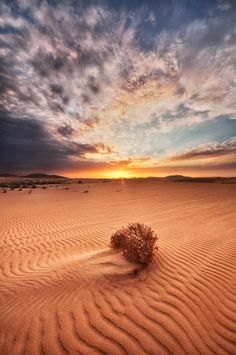 Sand Dunes of Corralejo at sunset. What an amazing sight. I wonder why anyone travels half way round the world for holidays when this is on our doorstep?