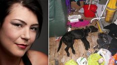 Jamie-Lee McVey moved out of her flat in High Wycombe, England, but forgot to take her pet dog and a kitten with her. For most ...