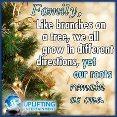 Like Branches