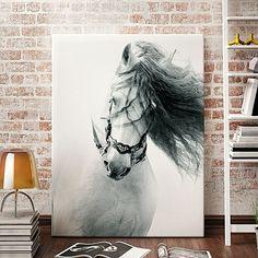 Horses Fury Canvas Print by A La Mode Studio   Zanui
