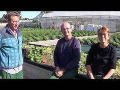 chaine tv  de Jardinage:permaculture:récolte! INCROYABLE !184 Kilos de fruits et légumes! Dans 15m2! - YouTube