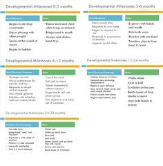 Child Developmental Milestone Chart, Birth to 1 year   Baby ...