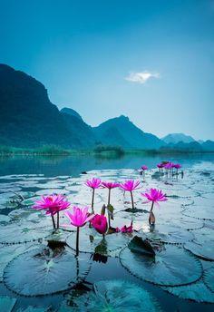 Cà Mau  #Travel #Vietnam #CaMau