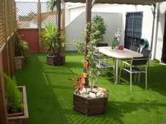 Wonderful artificial grass indoor - read up on our article for additional concepts! Small Balcony Design, Small Terrace, Small Backyard Patio, Rooftop Terrace, Small Palm Trees, Fake Turf, Fake Grass, Beautiful Dining Rooms, Artificial Turf