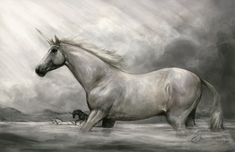 The Crossing by howlinghorse.deviantart.com on @DeviantArt